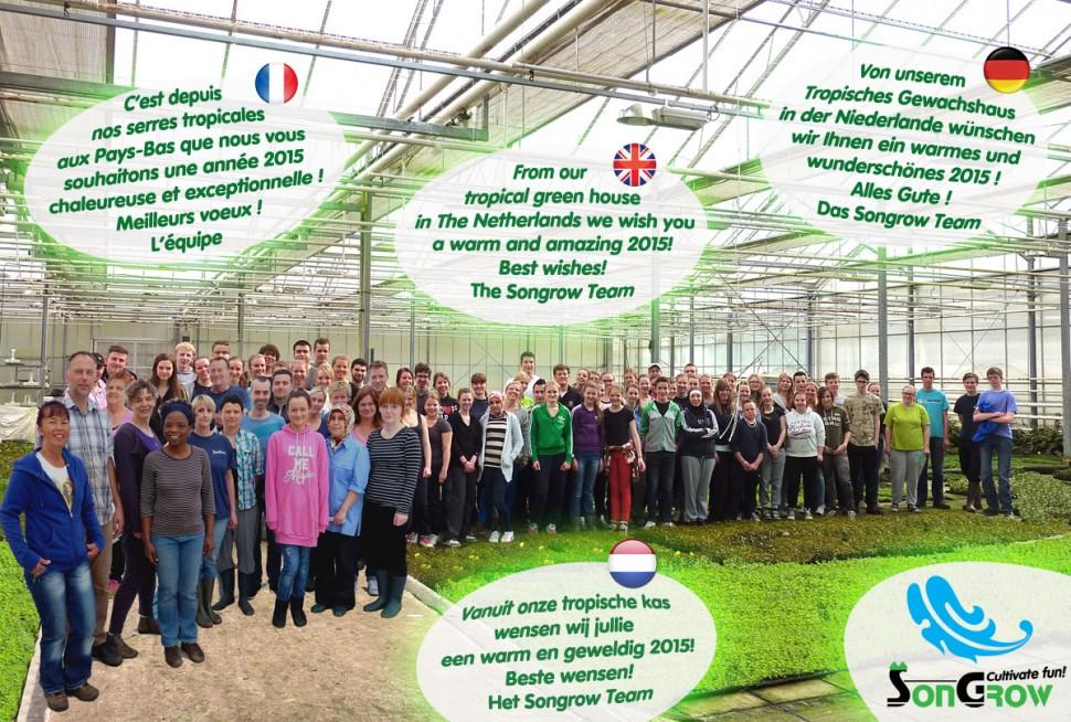Best Wishes 2015 green.jpg