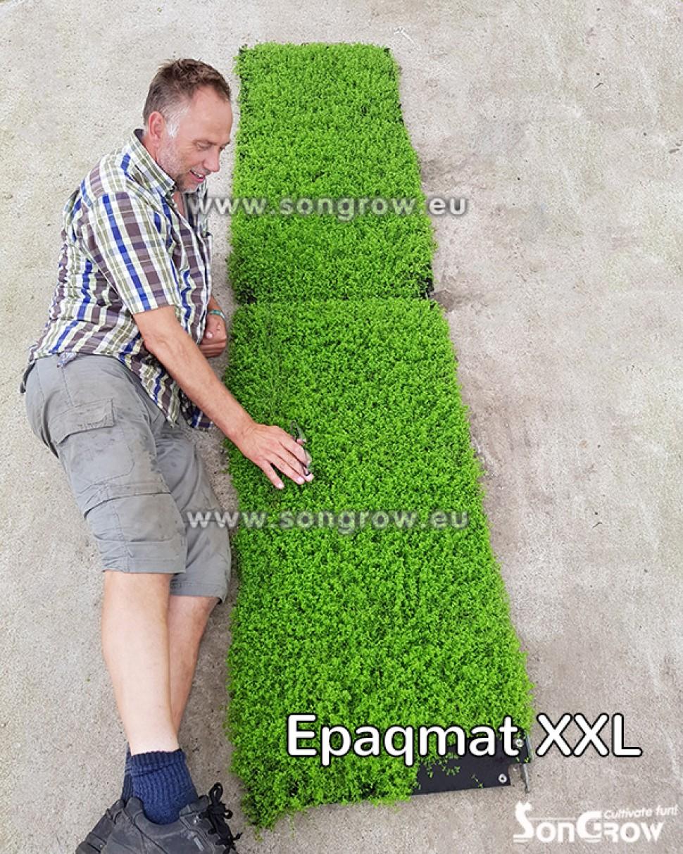epaqmatXXL.jpg